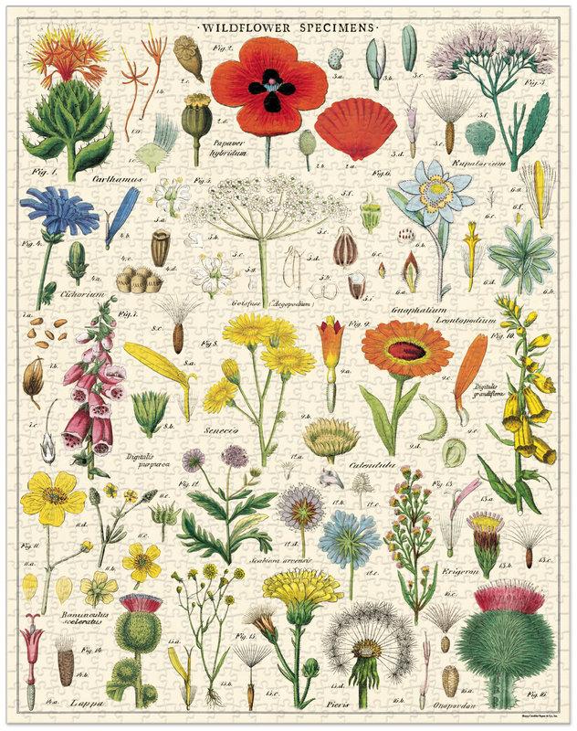 CAVALLINI Puzzle 1000 pièces 55x70cm Fleurs Sauvages