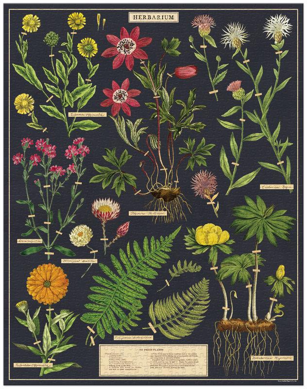 CAVALLINI Puzzle 1000 pièces 55x70cm Herbarium