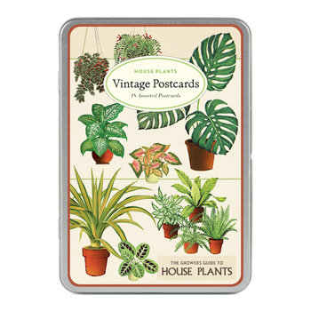 CAVALLINI Set de 18 Cartes Postales Vintage Plantes d'intérieur