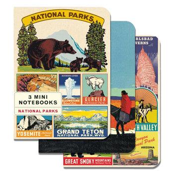 CAVALLINI Set de 3 Carnets 10x14cm Vintage Parcs Américains