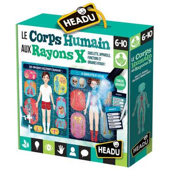 HEADU Le Corps Humain aux Rayons X