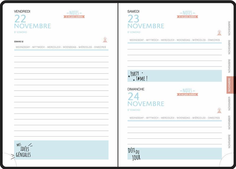 EXACOMPTA Agenda Scolaire 1 jour par page Forum Fourrure 120x170 rose