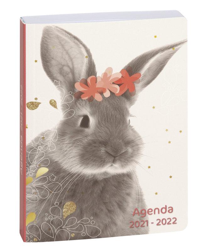 EXACOMPTA Agenda Scolaire 1 jour par page Forum Lovely 120x170 lapin fleur