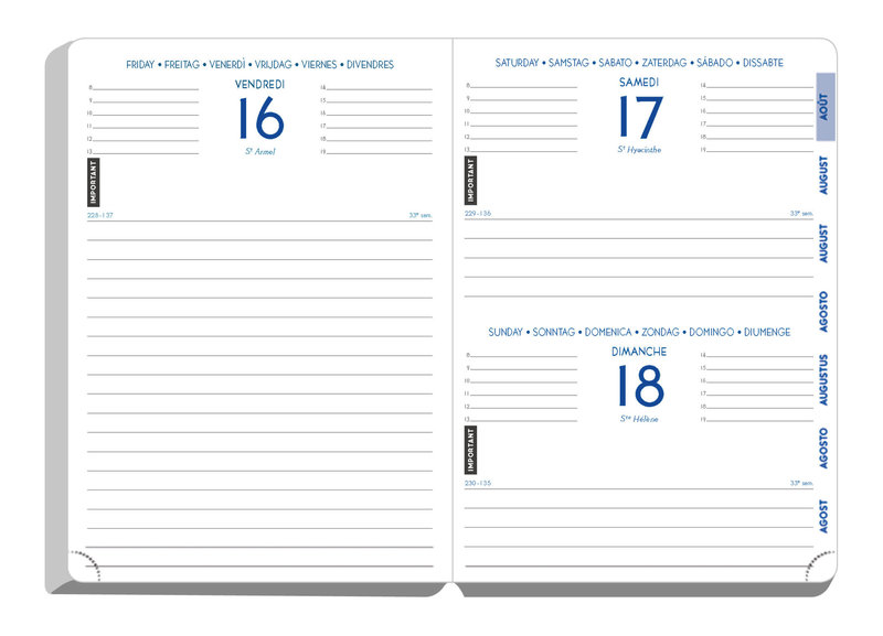 EXACOMPTA Agenda Scolaire 1 jour par page Forum Fluo Design 170x120 rose
