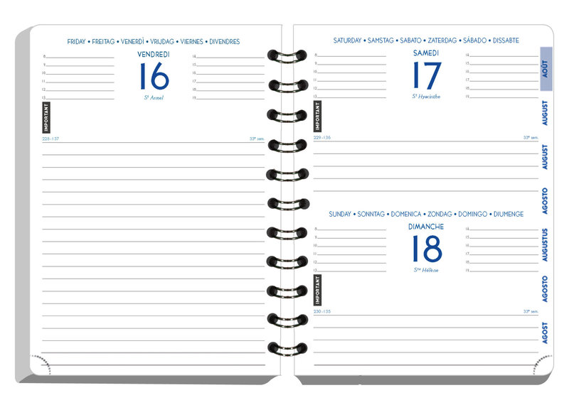 EXACOMPTA Agenda Scolaire 1 jour par page Forum Preston 170x120 kaki