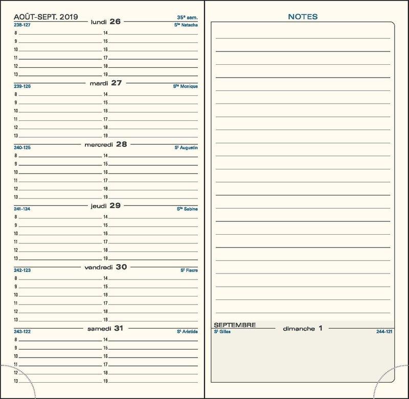 EXACOMPTA Agenda Scolaire semainier SAS 17 Eden 175x90 couleurs aléatoires