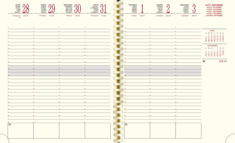 EXACOMPTA Agenda Scolaire semainier SAD 22 S Méline 225x185 rose