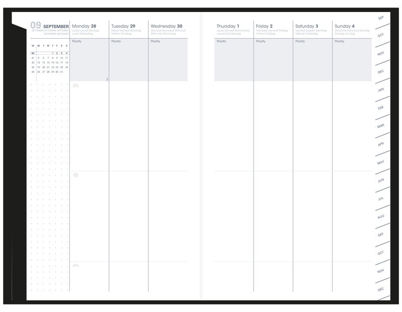 QUO VADIS Agenda scolaire semainier Plan Week ML Billy 16x24cm amande