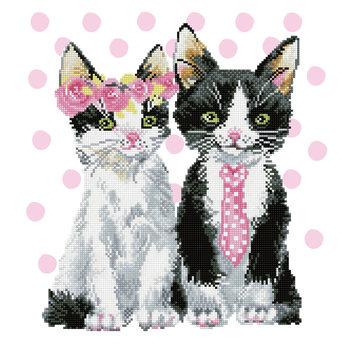 DIAMOND DOTZ Diamond Dotz Mr & Mrs Pink (Chats)