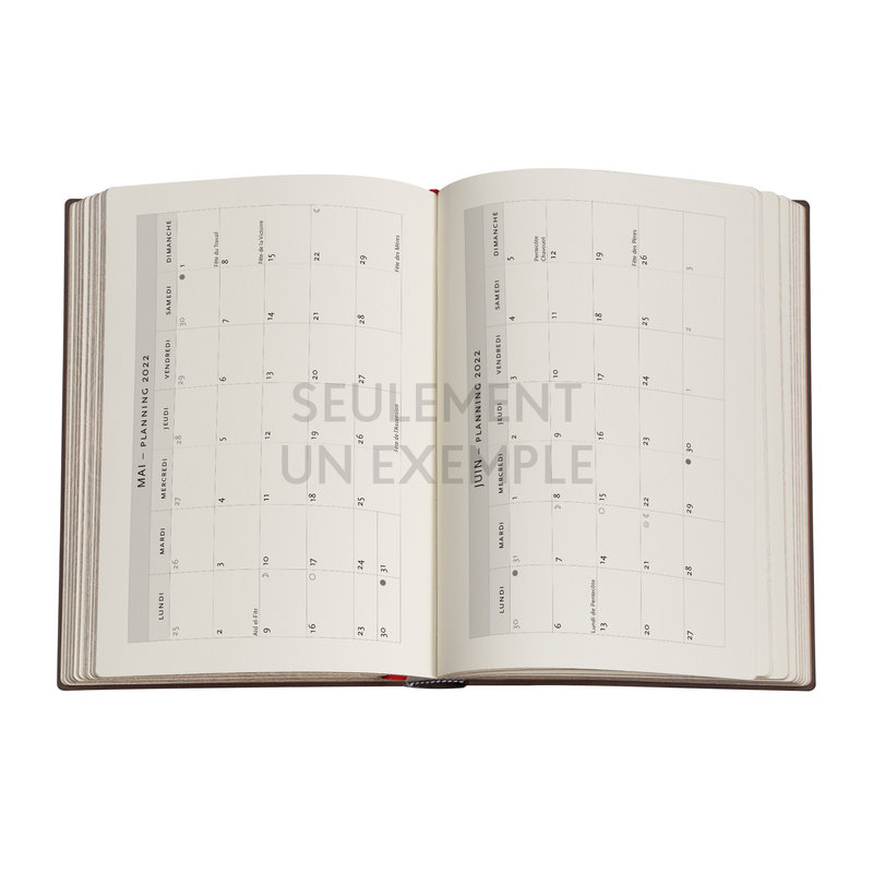 PAPERBLANKS Agenda 2022 1 jour/page Colibri Midi