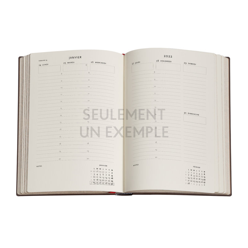 PAPERBLANKS Agenda 2022 semainier Chroniques Turquoises Midi