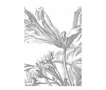 KEK Amsterdam Engraved Flowers wallpaper