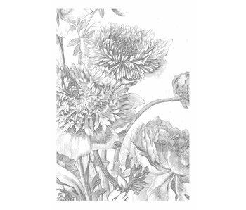 KEK Amsterdam Fondo de pantalla de flores gravadas