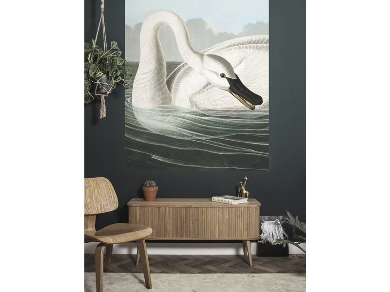 KEK Amsterdam Behangpaneel Trumpeter Swan