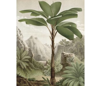 KEK Amsterdam Wallpaper panel Banana Tree