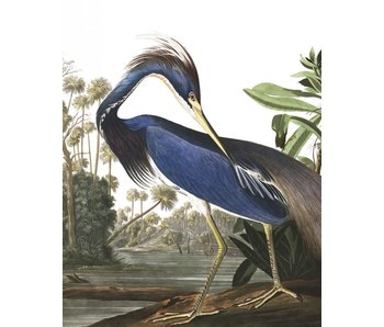KEK Amsterdam Wallpaper panel Louisiana Heron