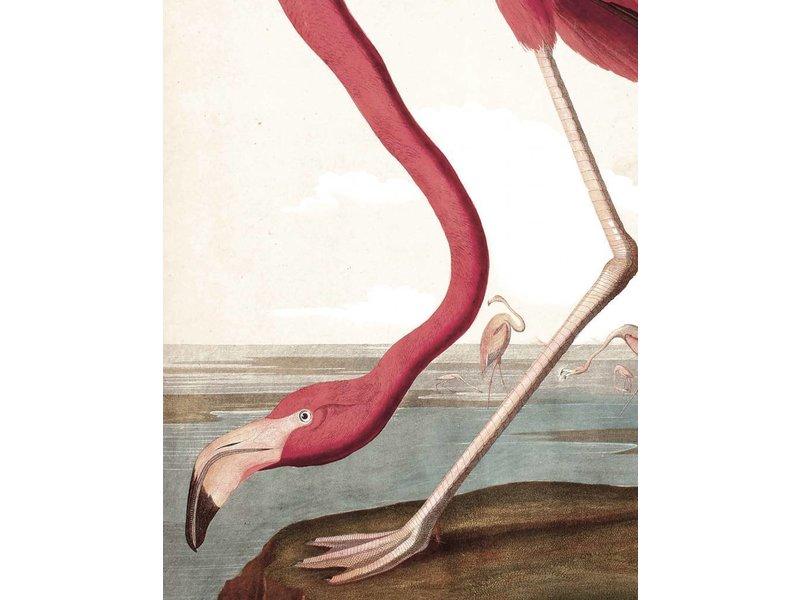 KEK Amsterdam Behangpaneel Flamingo