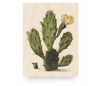 KEK Amsterdam Print on wood Botanical Cactus