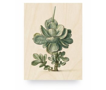 KEK Amsterdam Print on wood Botanical Plant