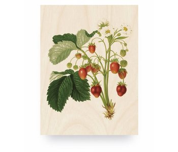 KEK Amsterdam Print op hout Botanical Strawberries