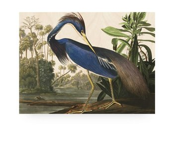 KEK Amsterdam Print on wood Louisiana Heron