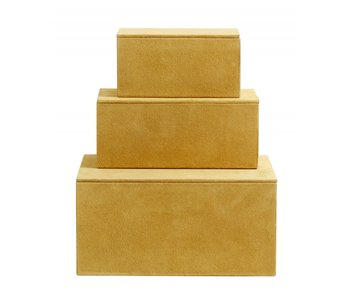 Nordal Caja de cajas de almacenamiento conjunto de 3 piezas - amarillo