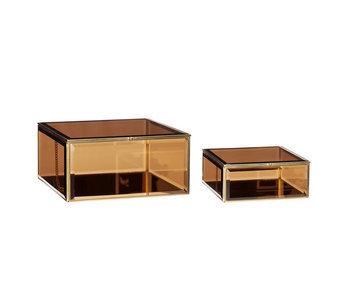 Hubsch Cajas expositoras de vidrio de metal - juego de 2 piezas
