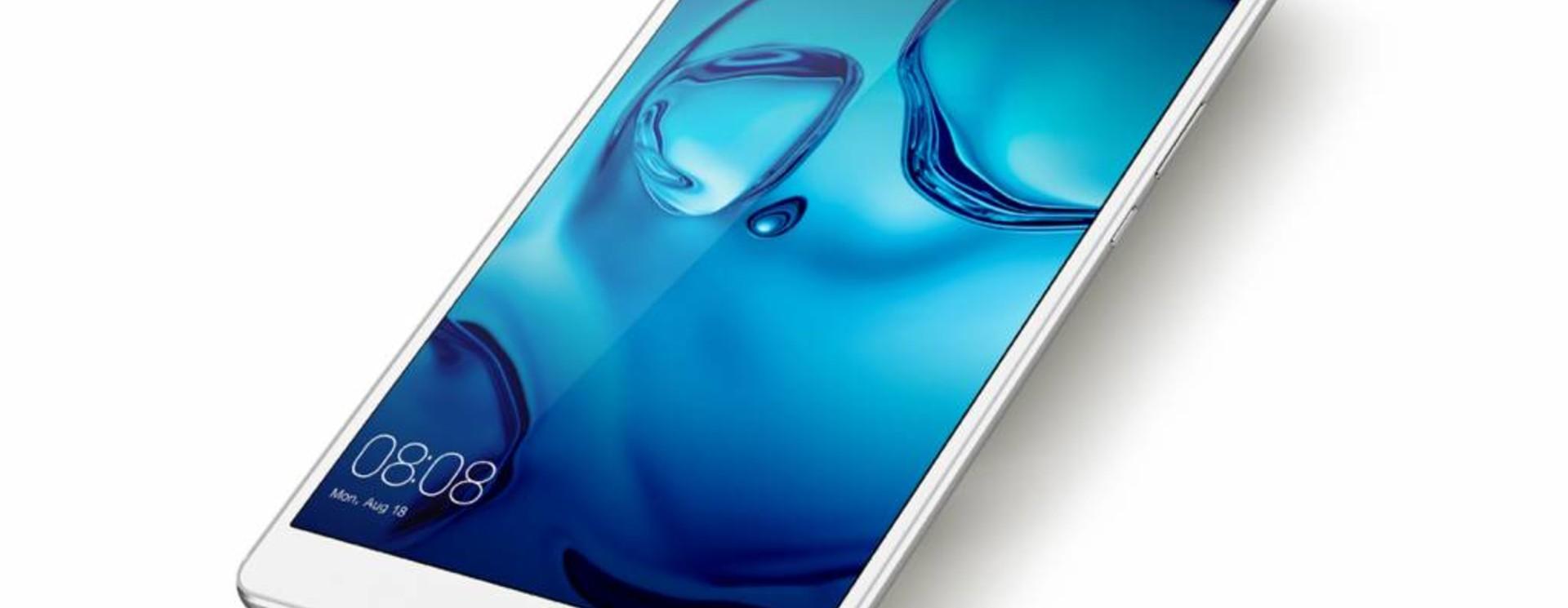 Huawei MediaPad M3 Sleeves