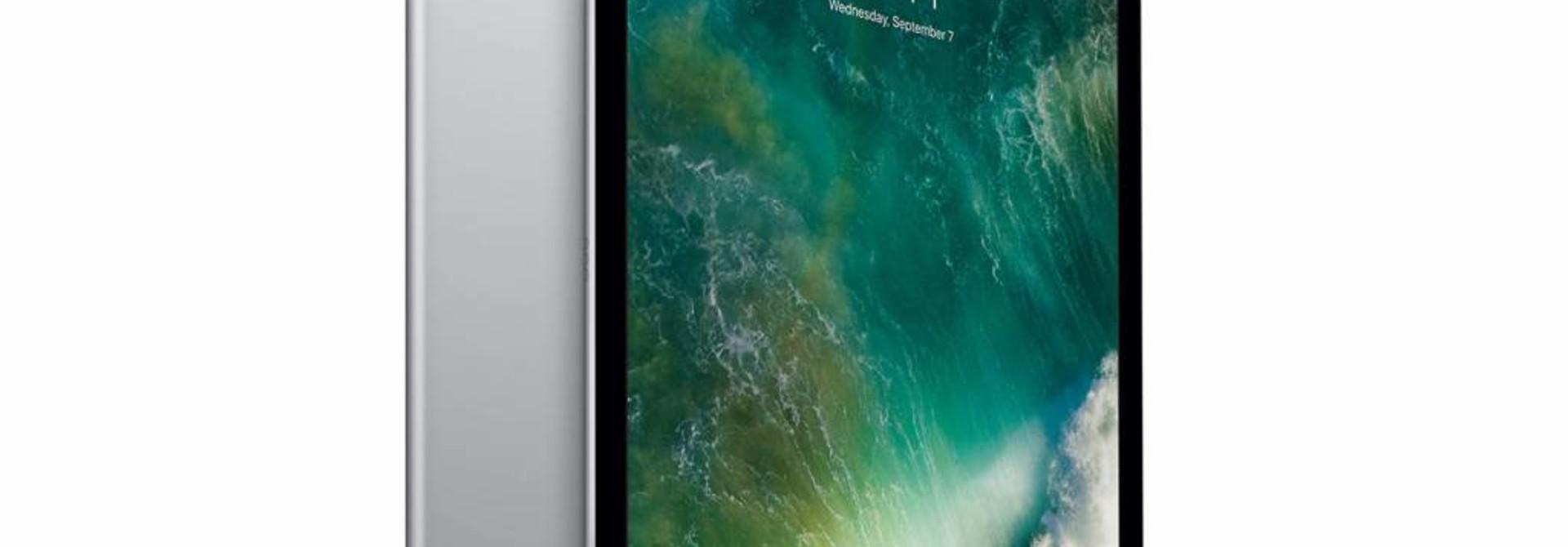 Apple iPad Pro 10.5 Sleeves