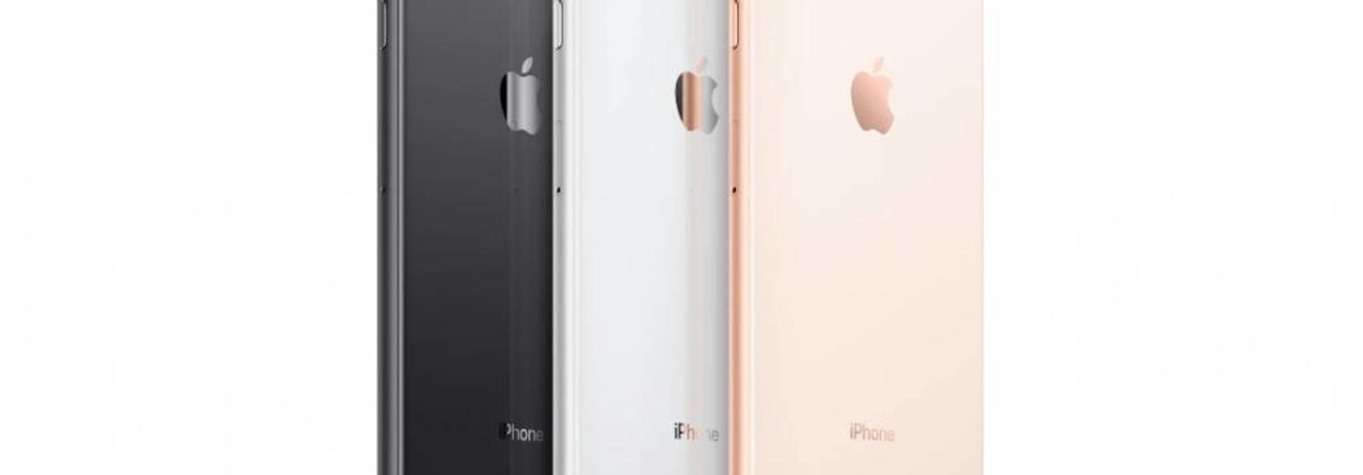 iPhone 8 & 8 Plus Sleeves Hüllen aus Filz