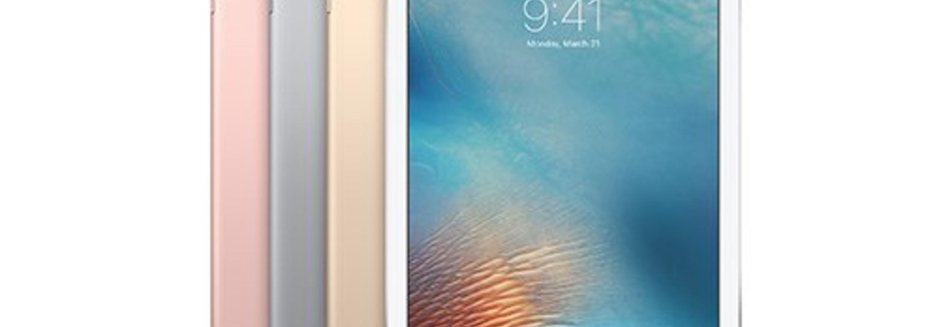 Apple iPad 9.7 (2018) Sleeves