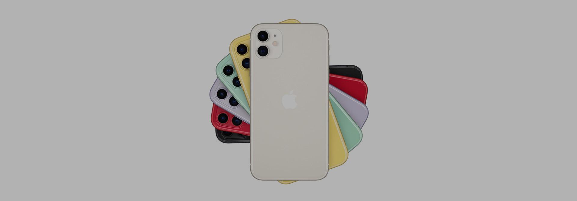 Apple iPhone 11 Sleeves