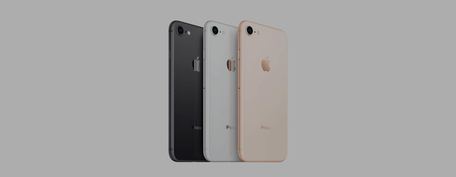 Apple iPhone 8 / 8 Plus Sleeves/Hüllen