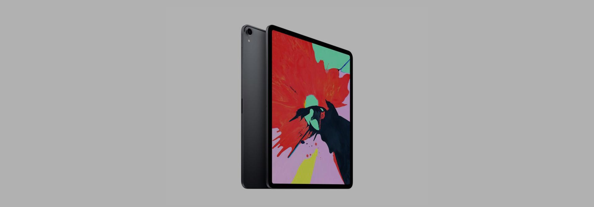 Apple iPad Pro 12.9 (2018) Sleeves & Cases