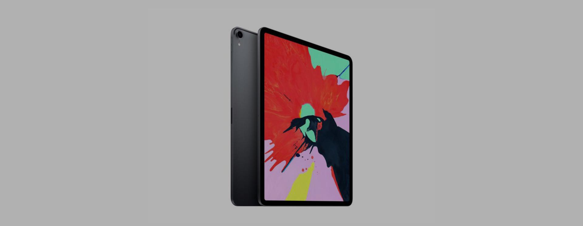 Apple iPad Pro 12.9 (2018) Sleeves & Hüllen