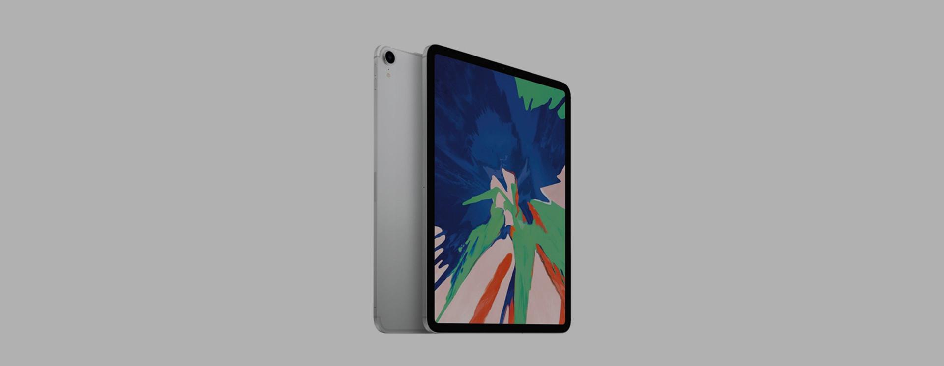 Apple iPad Pro 11 (2018) Sleeves & Cases
