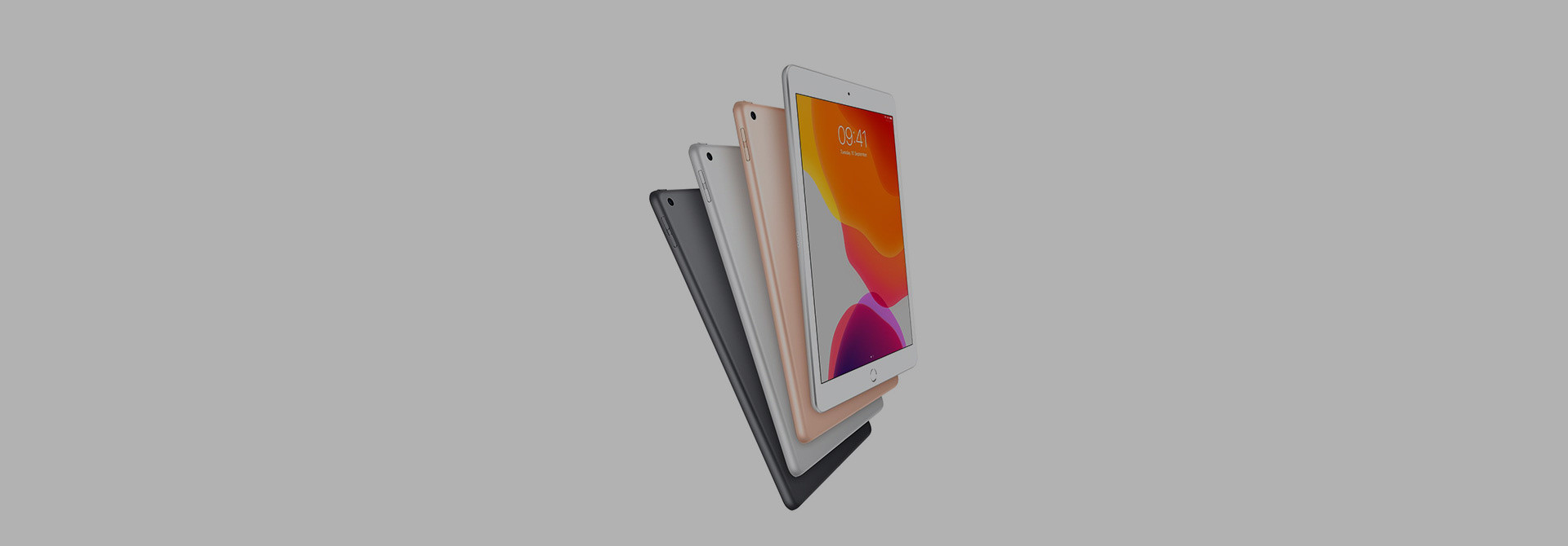 Apple iPad 10.2 (2019) Sleeves