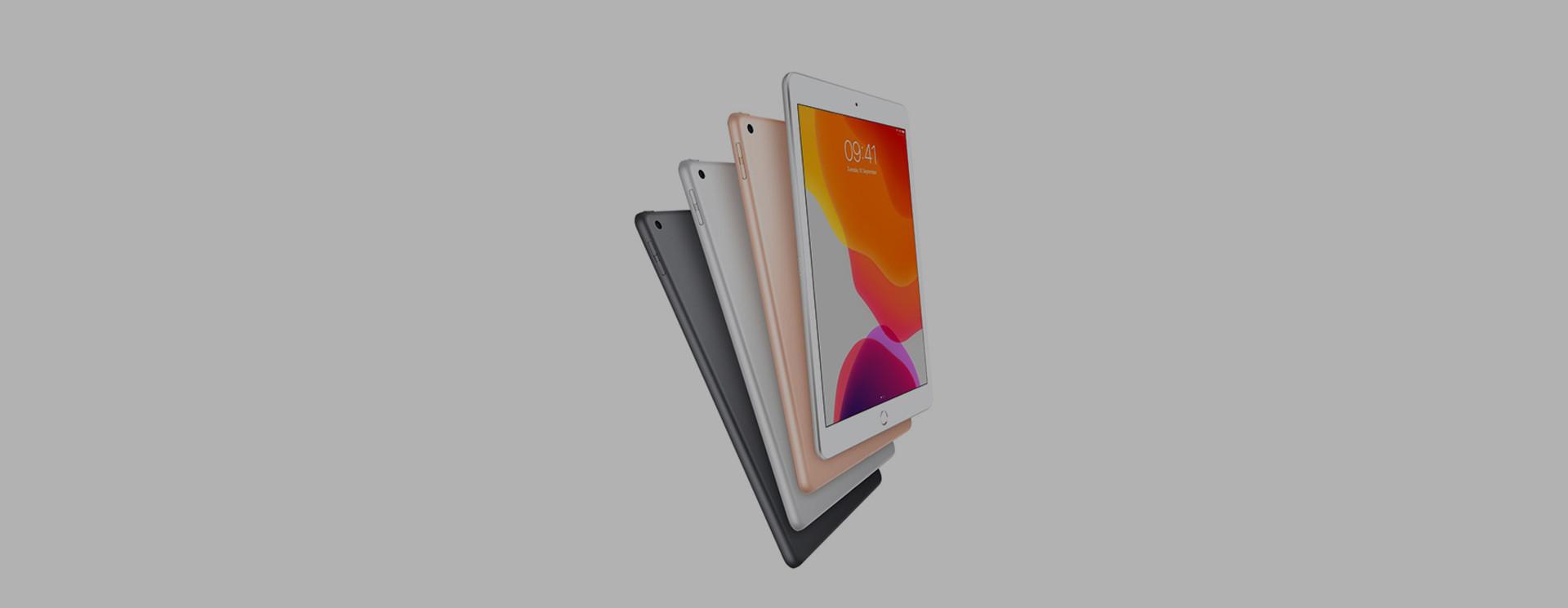 Apple iPad 10.2 (2019) Sleeves & Cases