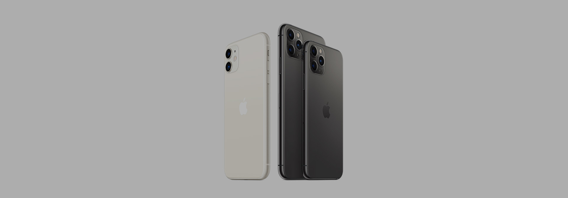 Apple iPhone 11 & 11 Pro/Max Sleeves & Hüllen