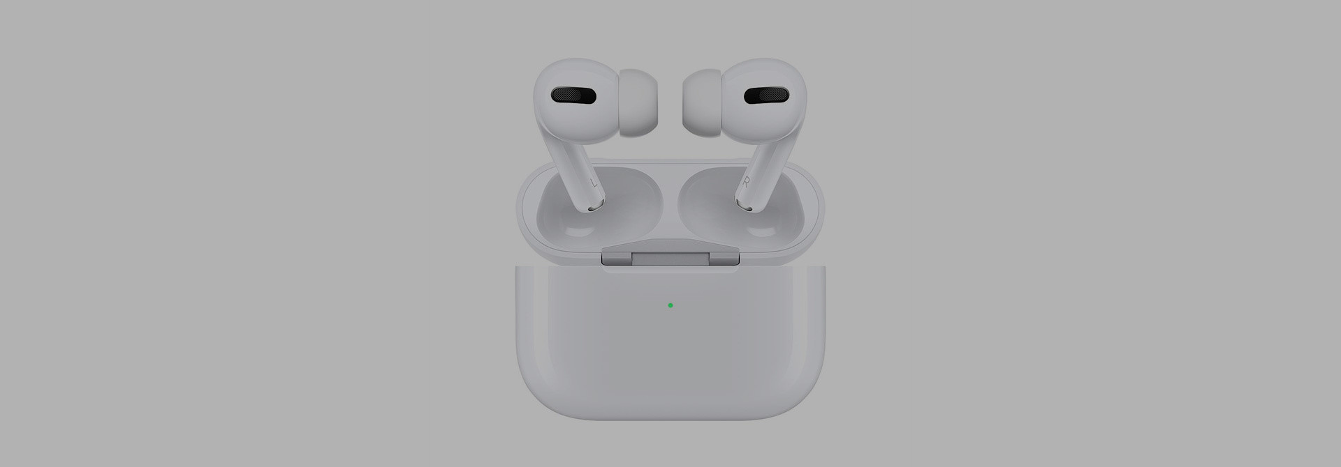 Apple AirPods Pro Sleeves & Hüllen
