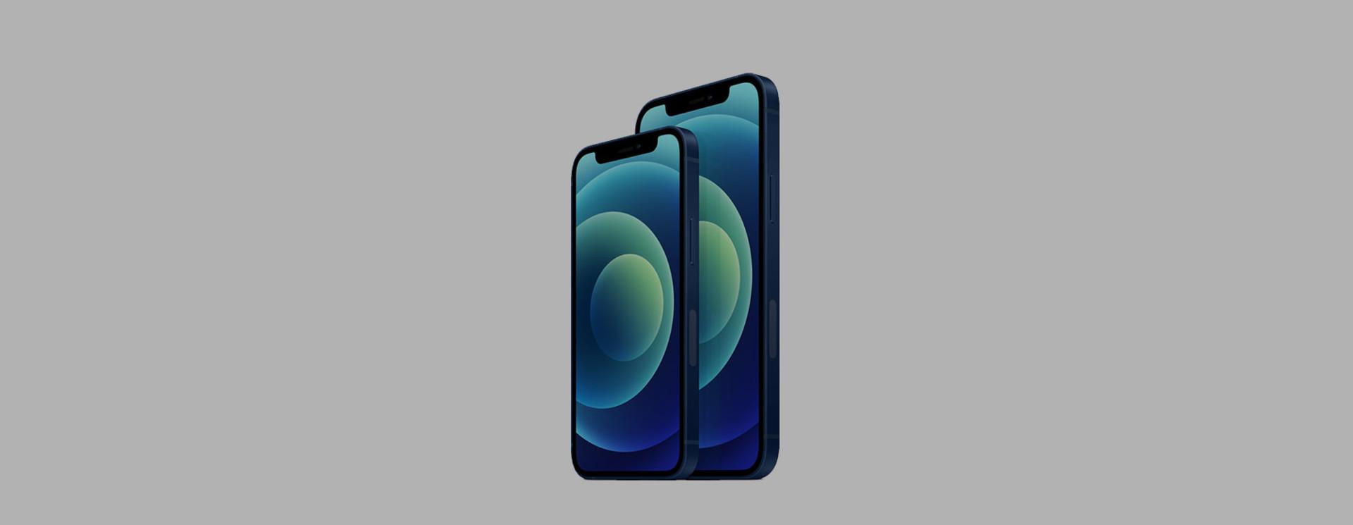 Apple iPhone 12 mini Sleeves & Hüllen