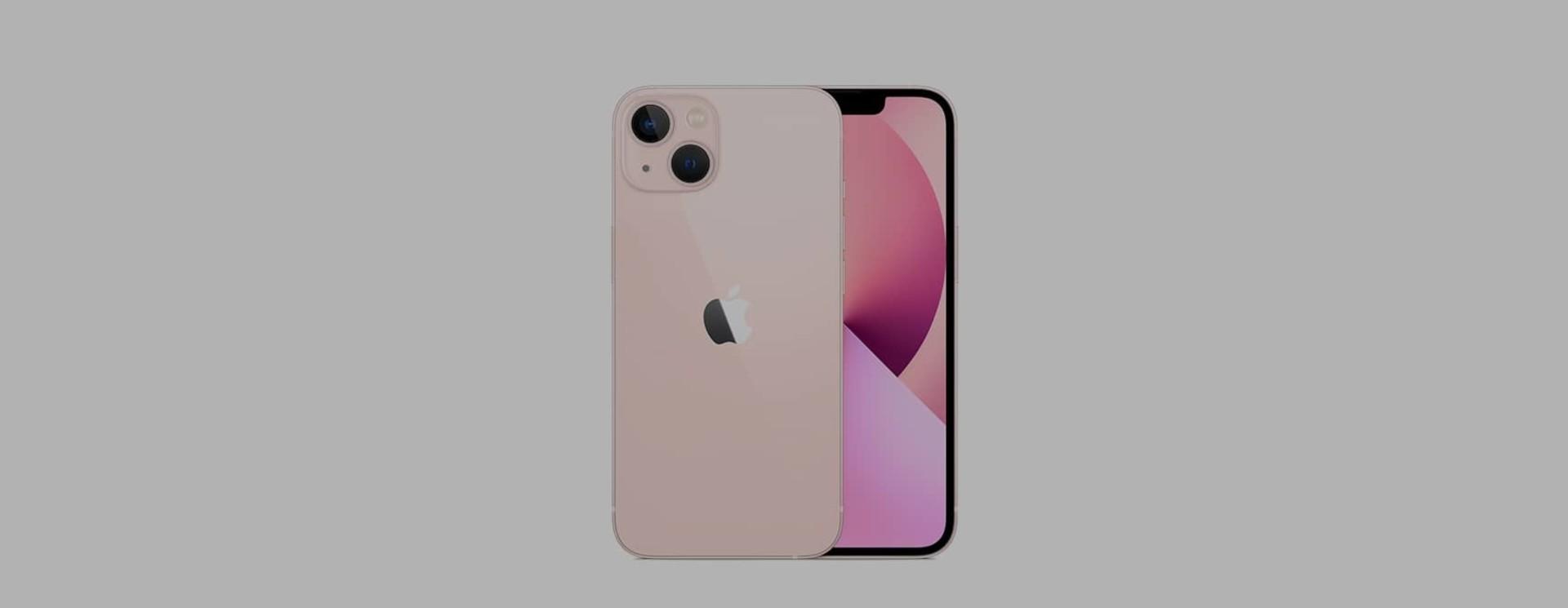 Apple iPhone 13 Sleeves & Hüllen
