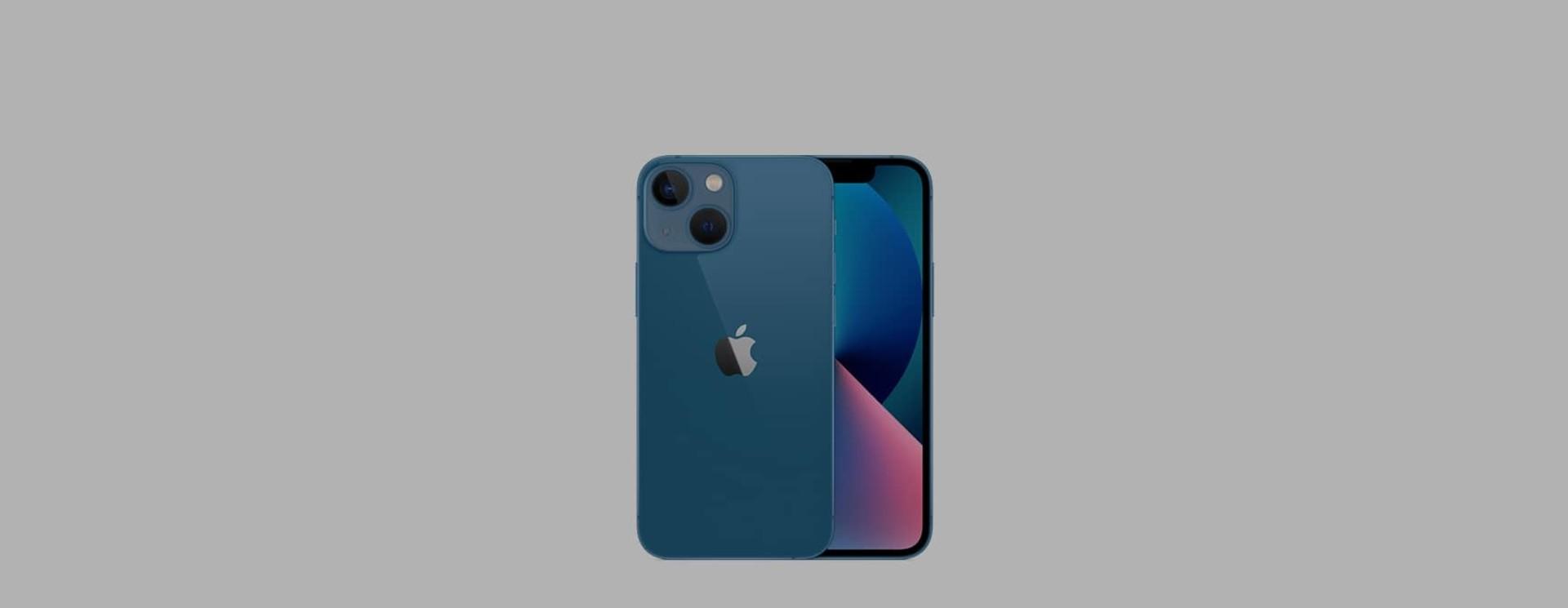 Apple iPhone 13 mini Sleeves & Cases