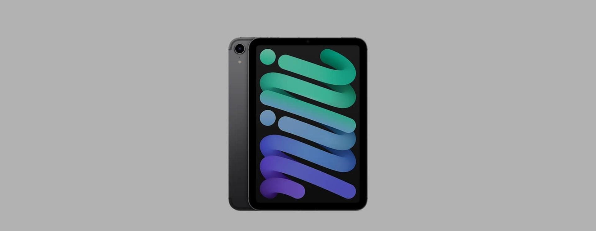 Apple iPad mini 6 (2021) Sleeves & Cases