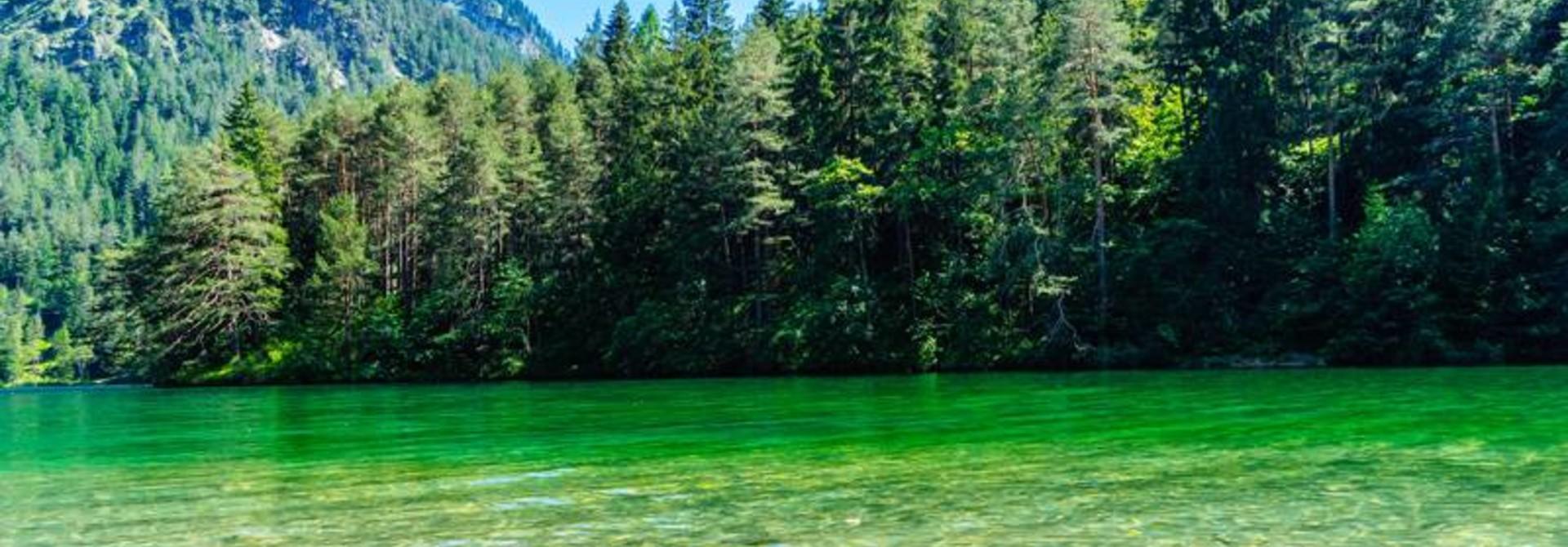 Sommergrüße vom Fernsteinsee