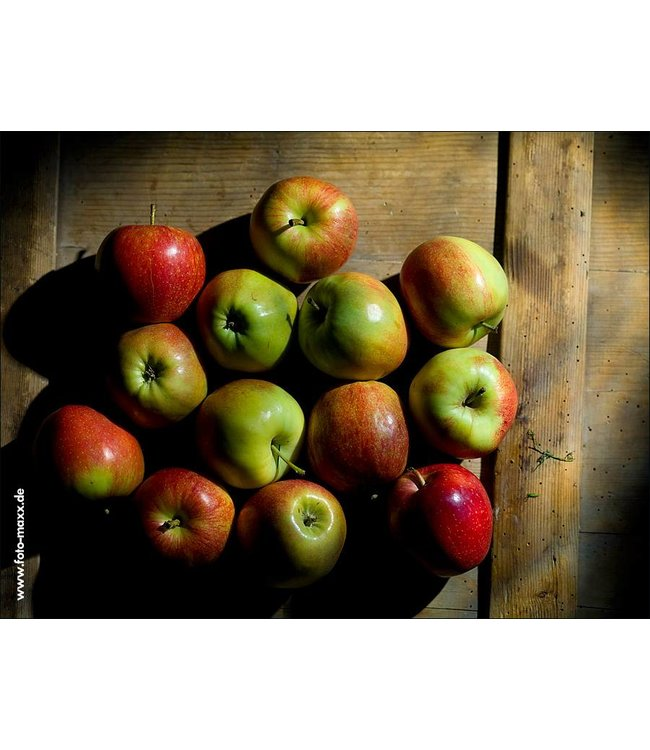 Werbe-/Produktfotograf Marcel Mende Äpfel auf Holz