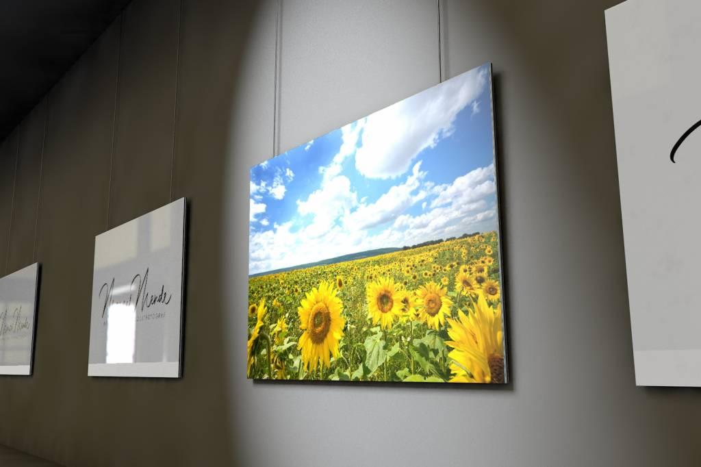 Werbe-/Produktfotograf Marcel Mende Ansicht auf ein großes Sonnenblumenfeld