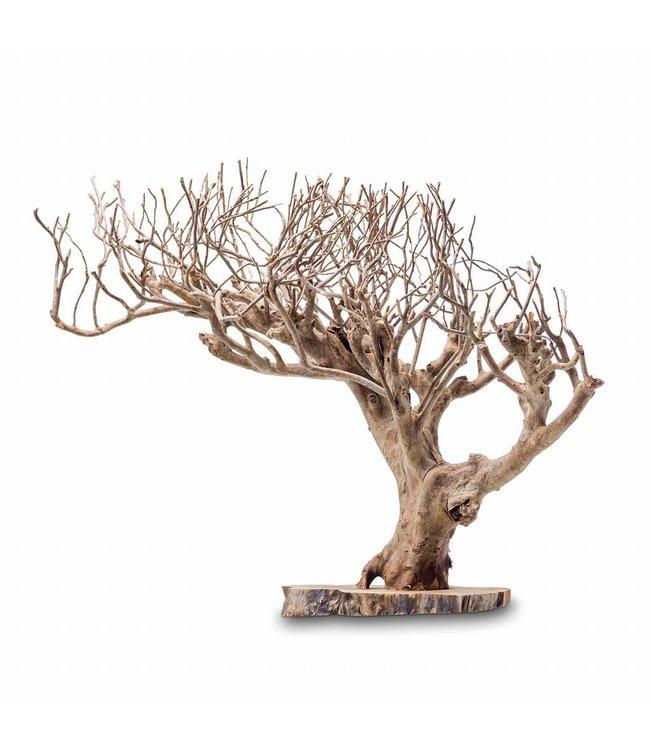 black and gold Unikat Baum