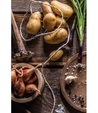 Werbe-/Produktfotograf Marcel Mende Tomaten & Zwiebeln