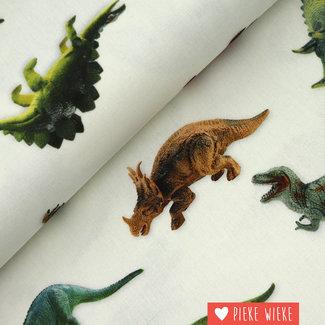 Canvas Dino's
